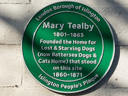 Tealby, Mary - Battersea Dogs Home (id=2858)